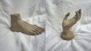 pied main